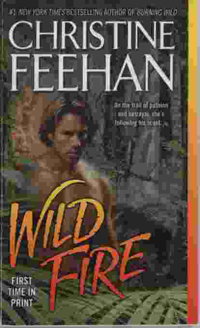 Image for WILD FIRE