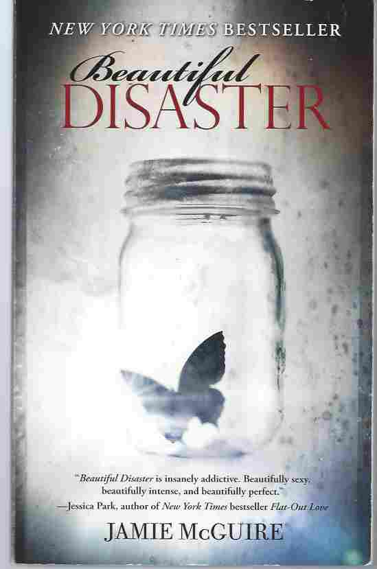 Image for BEAUTIFUL DISASTER  A Novel