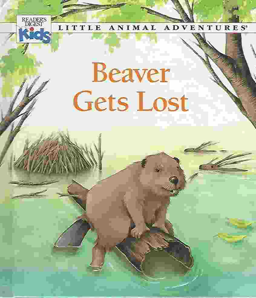 Image for BEAVER GETS LOST