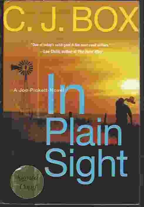 Image for IN PLAIN SIGHT