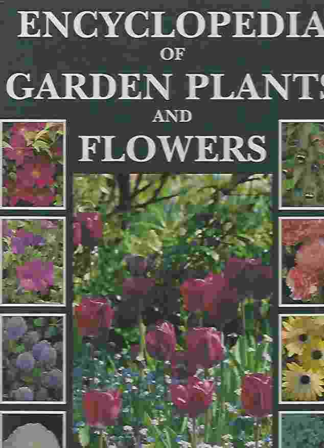 Image for ENCYCLOPEDIA OF GARDEN PLANTS AND FLOWERS