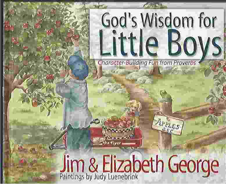 Image for GOD'S WISDOM FOR LITTLE BOYS  Character-Building Fun from Proverbs