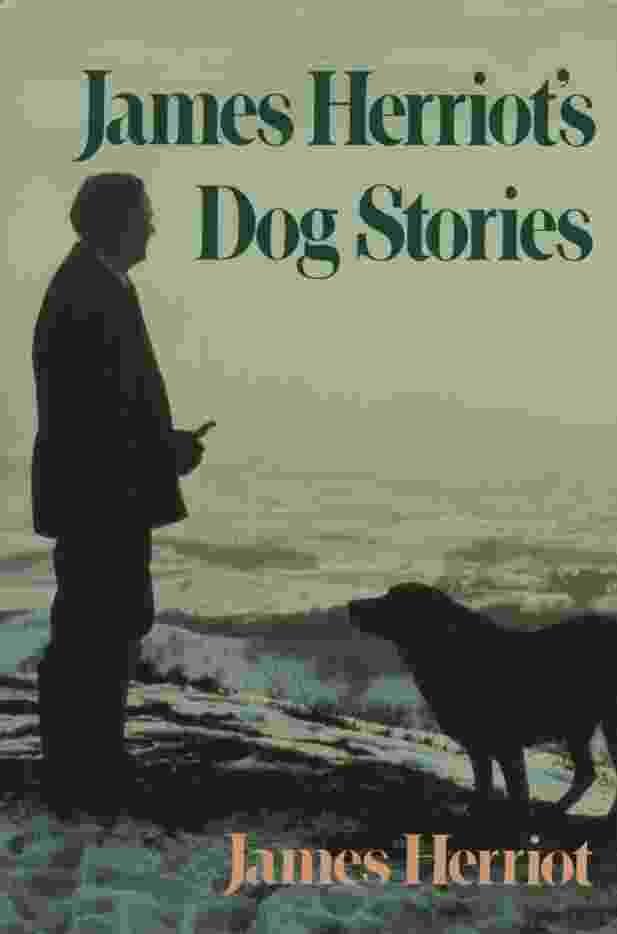 Image for JAMES HERRIOT'S DOG STORIES  Warm And Wonderful Stories About The Animals Herriot Loves Best