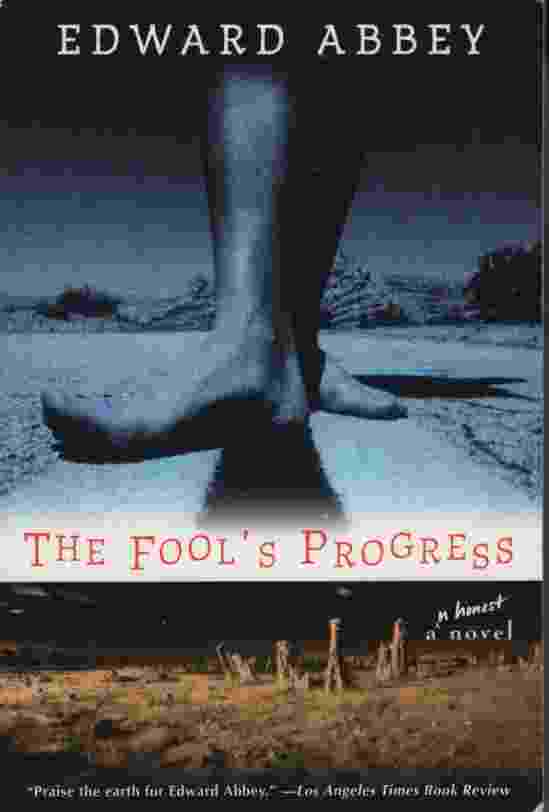 Image for THE FOOL'S PROGRESS  An Honest Novel