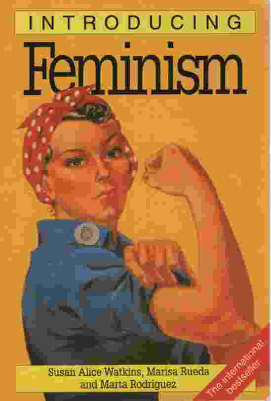 Image for INTRODUCING FEMINISM
