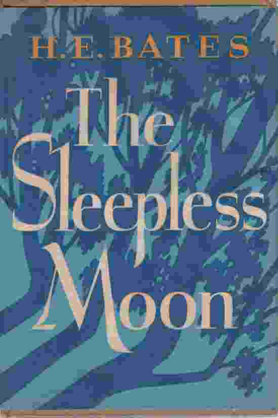 Image for THE SLEEPLESS MOON
