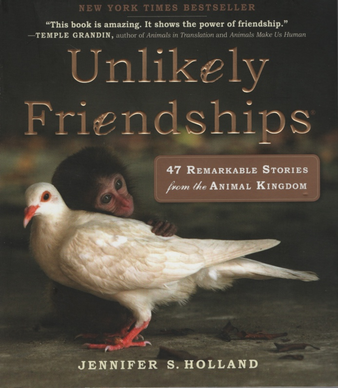 Image for UNLIKELY FRIENDSHIPS 47 Remarkable Stories from the Animal Kingdom