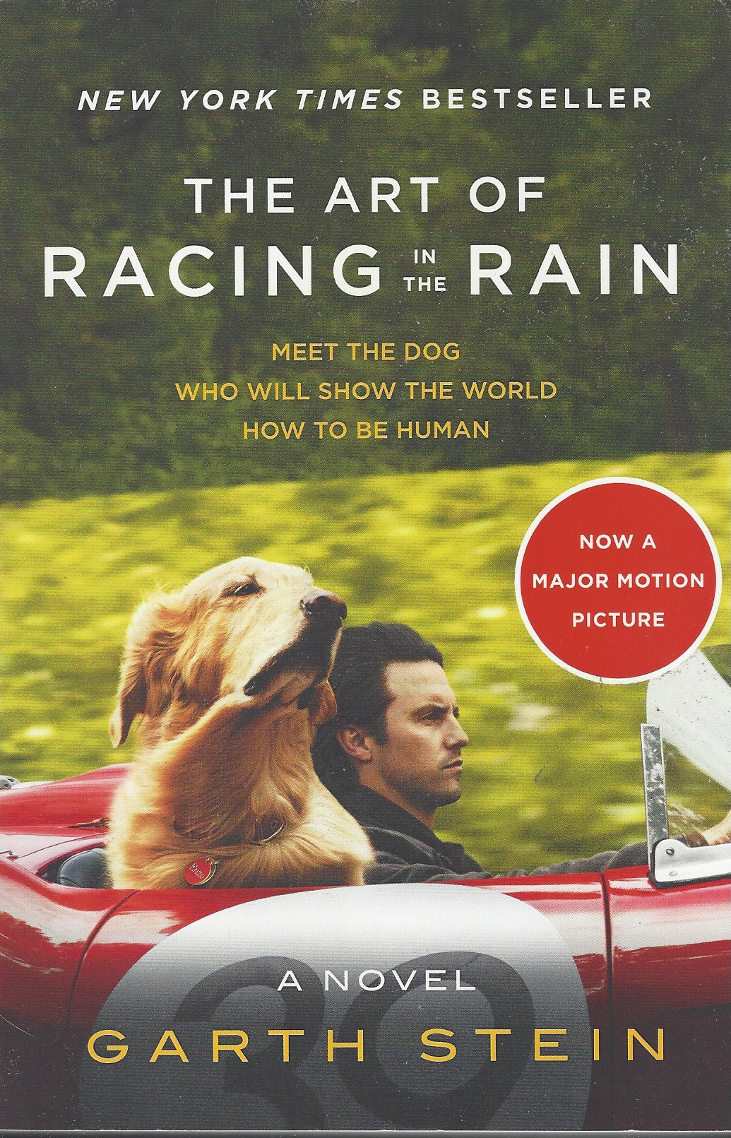 Image for THE ART OF RACING IN THE RAIN [MOVIE TIE-IN EDITION]