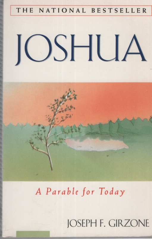Image for JOSHUA, A PARABLE FOR TODAY