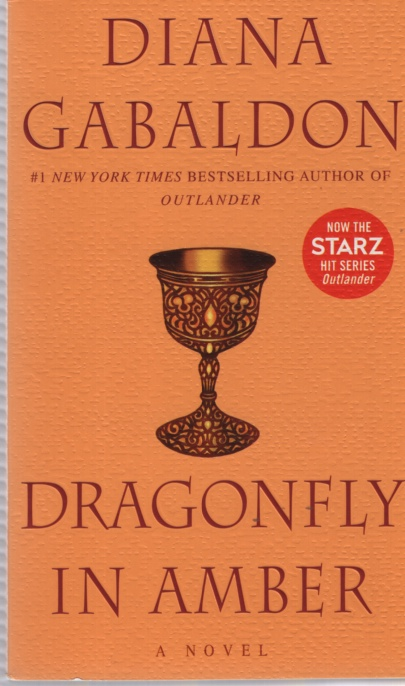 Image for DRAGONFLY IN AMBER