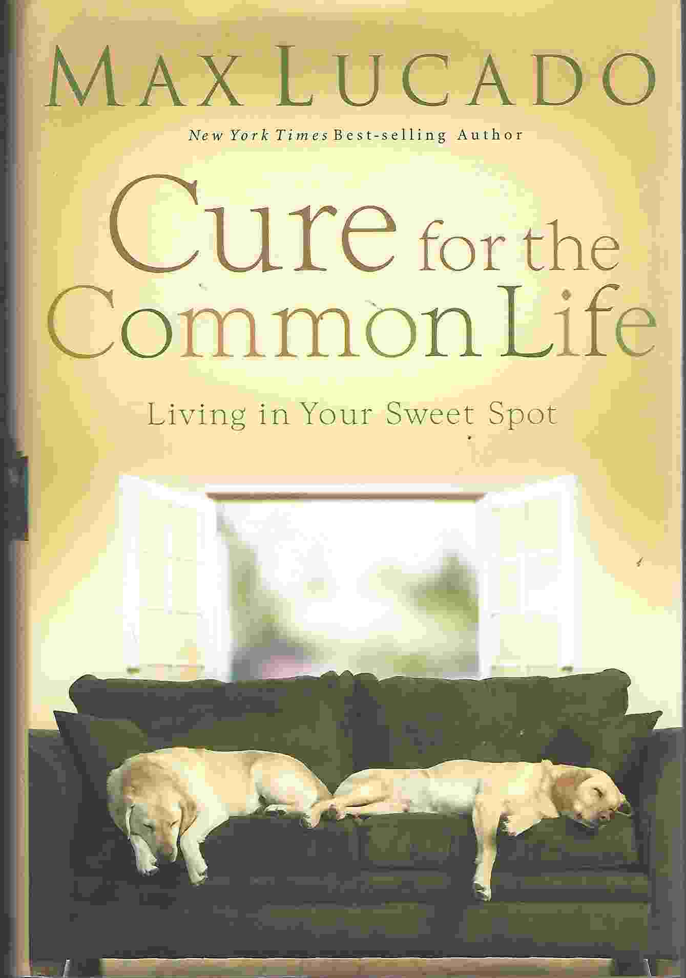Image for CURE FOR THE COMMON LIFE Living in Your Sweet Spot