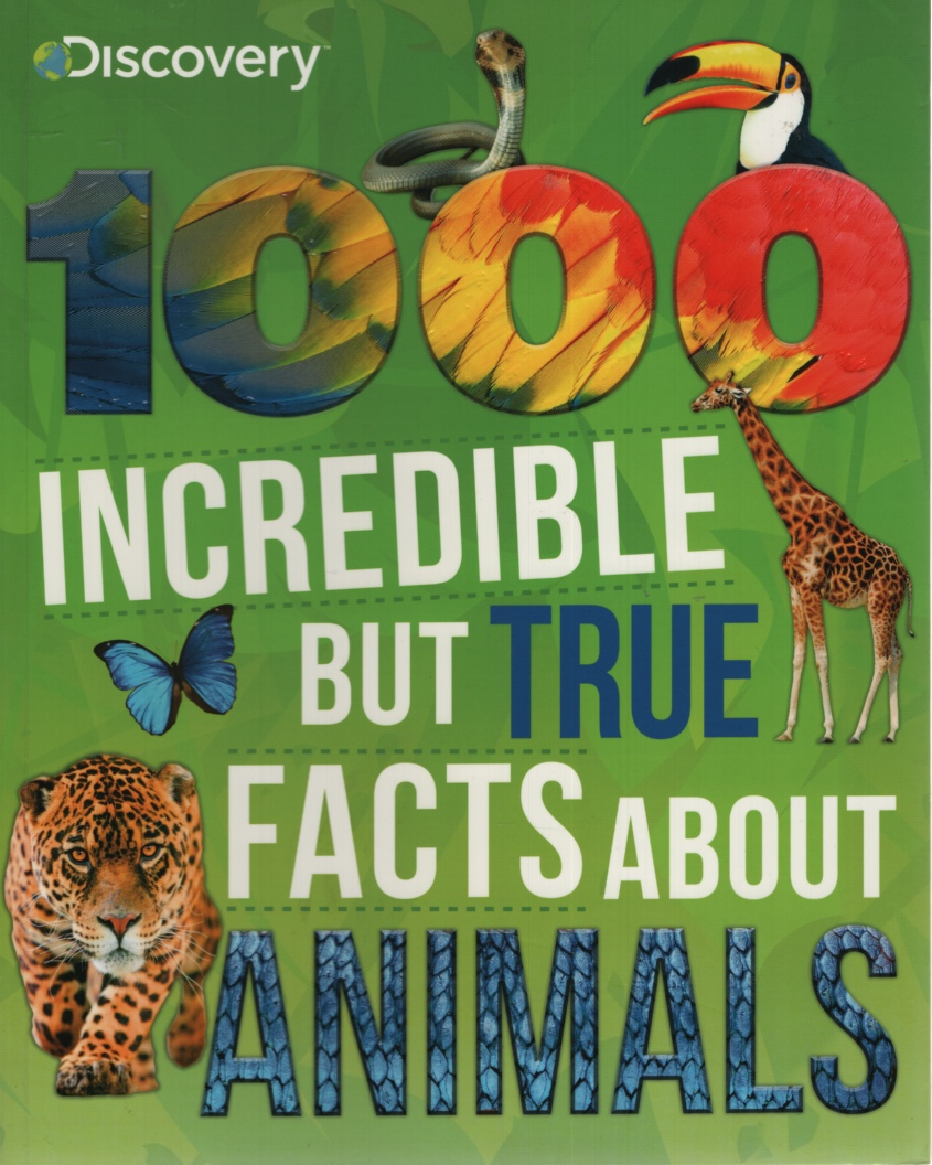 Image for 1000 INCREDIBLE BUT TRUE FACTS ABOUT ANIMALS