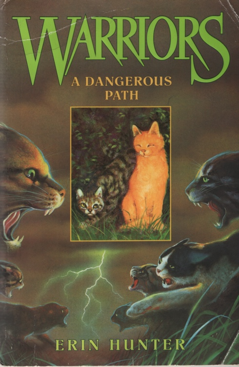 Image for WARRIORS: A DANGEROUS PATH